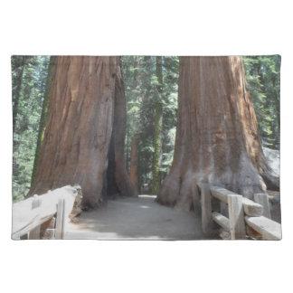 Sequoia National Park Cloth Placemat