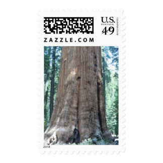 Sequoia National Park Stamps