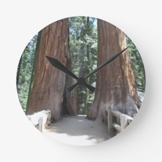 Sequoia National Park Round Clock