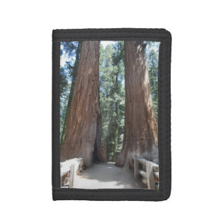Sequoia National Park Trifold Wallet