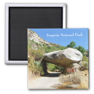Sequoia National Park/Tunnel Rock Magnet! 2 Inch Square Magnet