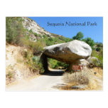 Sequoia National Park/Tunnel Rock Postcard! Postcard