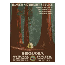 Sequoia National Park - WPA Vintage Poster