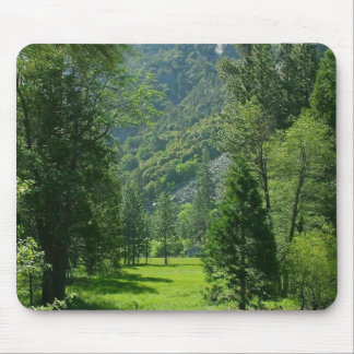 Sequoia Parks Meadows Rivers Streams Trees Green Mouse Pad