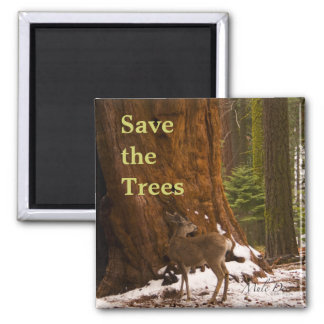 Sequoia Save the Trees Magnet