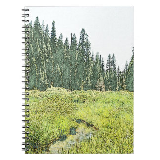 Sequoia Stream - Travelogue Journal (Natural)