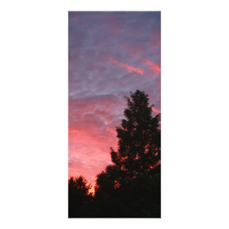 Sequoia Sunrise Rack Card Design