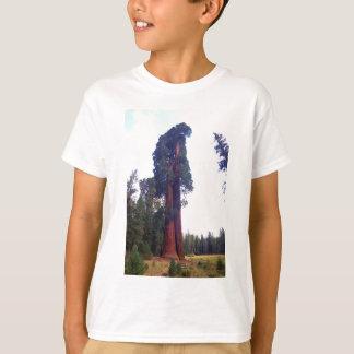 Sequoia T-Shirt