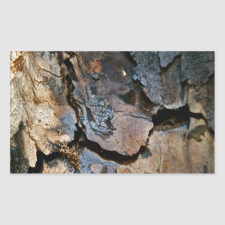 SEQUOIA TREE BARK DETAIL RECTANGULAR STICKER