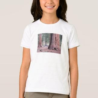 Sequoia  Tree King T-Shirt