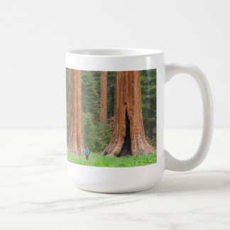Sequoia Trees Mug