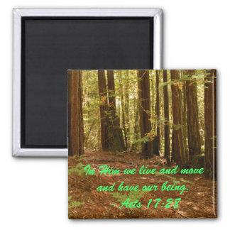 Sequoias 2 Inch Square Magnet