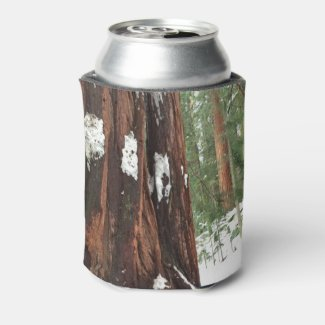 Sequoias Covered in Snow, Kings Canyon and Sequoia Can Cooler