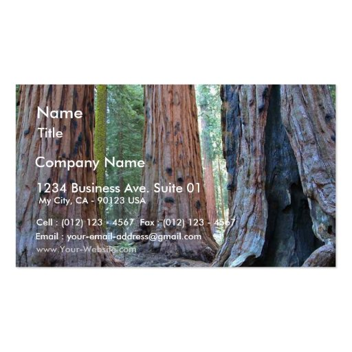 Sequoias Tree Forests Double-Sided Standard Business Cards (Pack Of 100)
