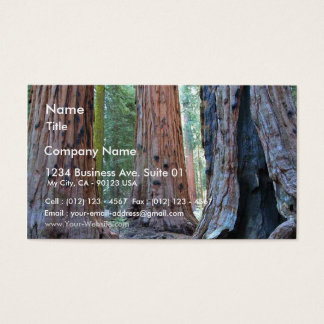 Sequoias Tree Forests Business Card