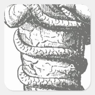 Serapis Pegatina Cuadrada