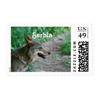 Serbia Wolf Postage