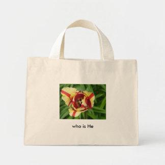 Serena, tira amarilla del tulipán w/red…   quién e bolsa tela pequeña