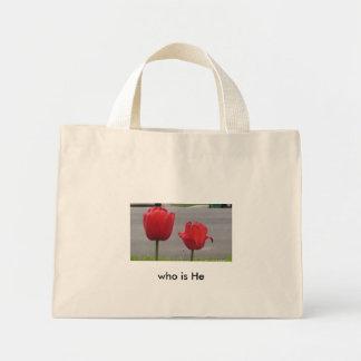 Serena, tulipanes en la calle bolsa tela pequeña