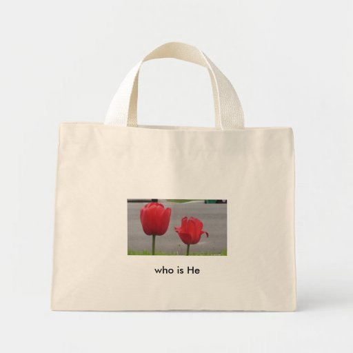 Serena, Tulips on the Street Bags