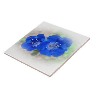 Serenade in Blue Tile
