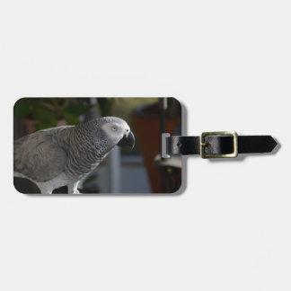 Serene African Grey Parrot Bag Tag