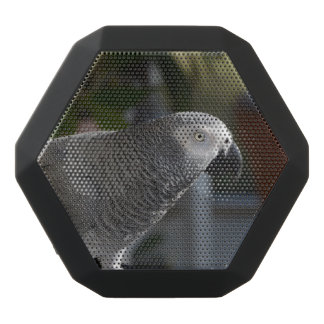 Serene African Grey Parrot Black Bluetooth Speaker