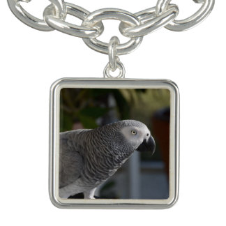Serene African Grey Parrot Bracelets