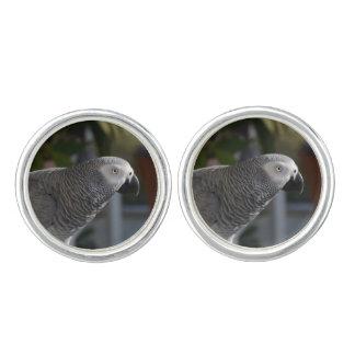 Serene African Grey Parrot Cufflinks