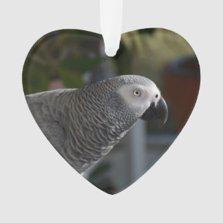 Serene African Grey Parrot Ornament