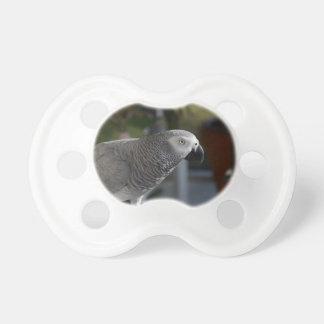 Serene African Grey Parrot Pacifier