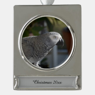 Serene African Grey Parrot Silver Plated Banner Ornament