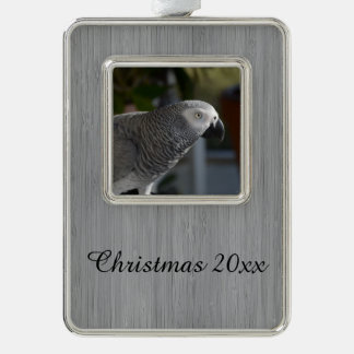 Serene African Grey Parrot Silver Plated Framed Ornament