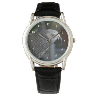 Serene African Grey Parrot Watches