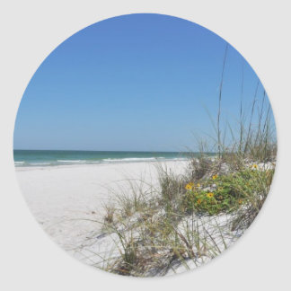 Serene Beach Sea Oats 2 Florida Beach Scene Classic Round Sticker