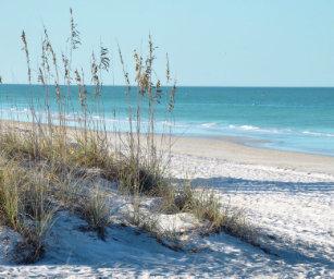 Serene Beach Sea Oats Blue Water Mouse Pad