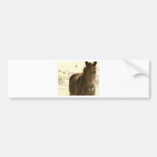 Serene Bumper Sticker