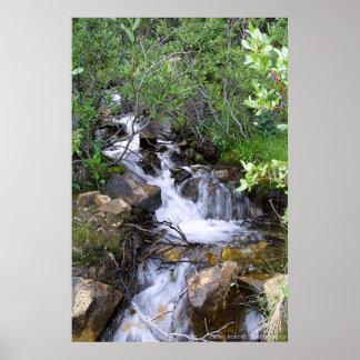 Serene Falls Posters