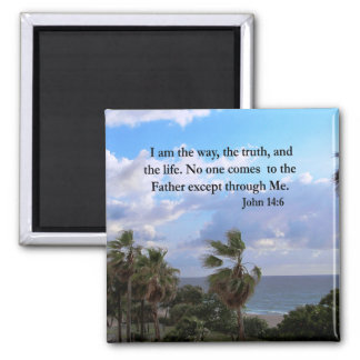 SERENE JOHN 14:6 PHOTO DESIGN MAGNET