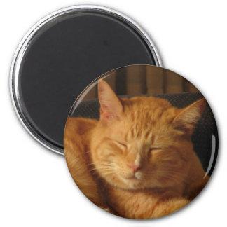 Serene Kitty 2 Inch Round Magnet