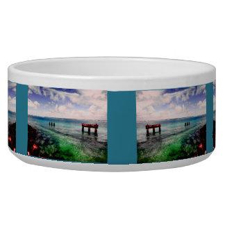 Serene Lagoon Bowl
