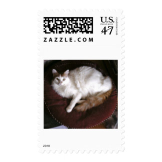 serene royal cat postage