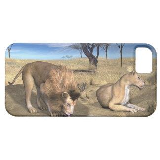 Serengeti Lions iPhone 5 Cases