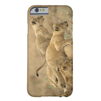 Serengeti National Park, Tanzania 2 Barely There iPhone 6 Case