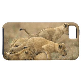 Serengeti National Park, Tanzania 2 iPhone SE/5/5s Case