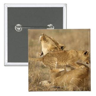 Serengeti National Park, Tanzania Pins