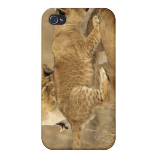Serengeti National Park, Tanzania iPhone 4/4S Case