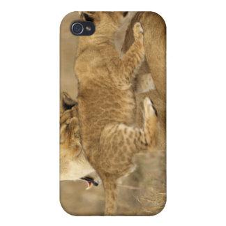 Serengeti National Park, Tanzania iPhone 4/4S Covers