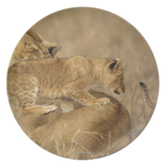 Serengeti National Park, Tanzania Melamine Plate