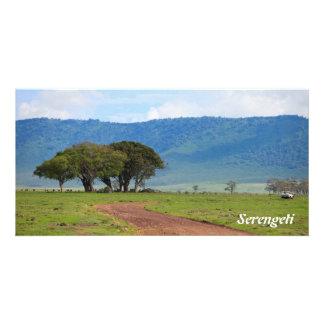 Serengeti Picture Card
